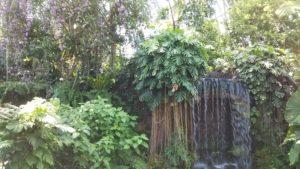 夢の島熱帯植物園 都内でジャングルトリップ体験