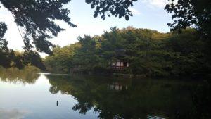 石神井公園 思ったよりも広かった!! 池のボートで夕涼み