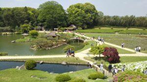 【岡山後楽園】日本三大庭園の一つ GWはサツキと花菖蒲が見頃